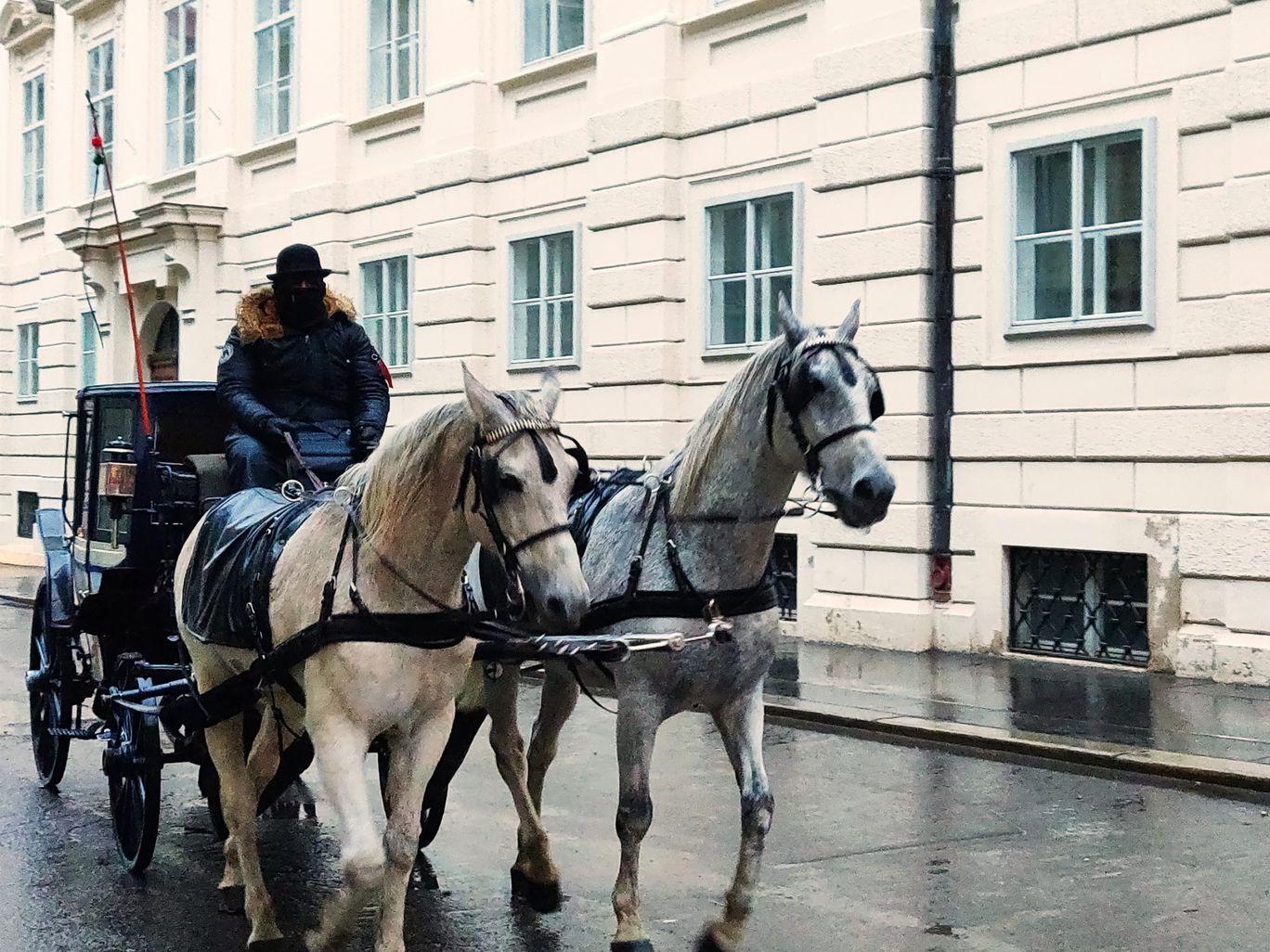 Photo of Budapest By Satya Naidu