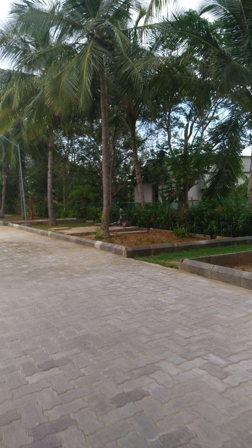 Photo of Mahabalipuram By Pankti Shah
