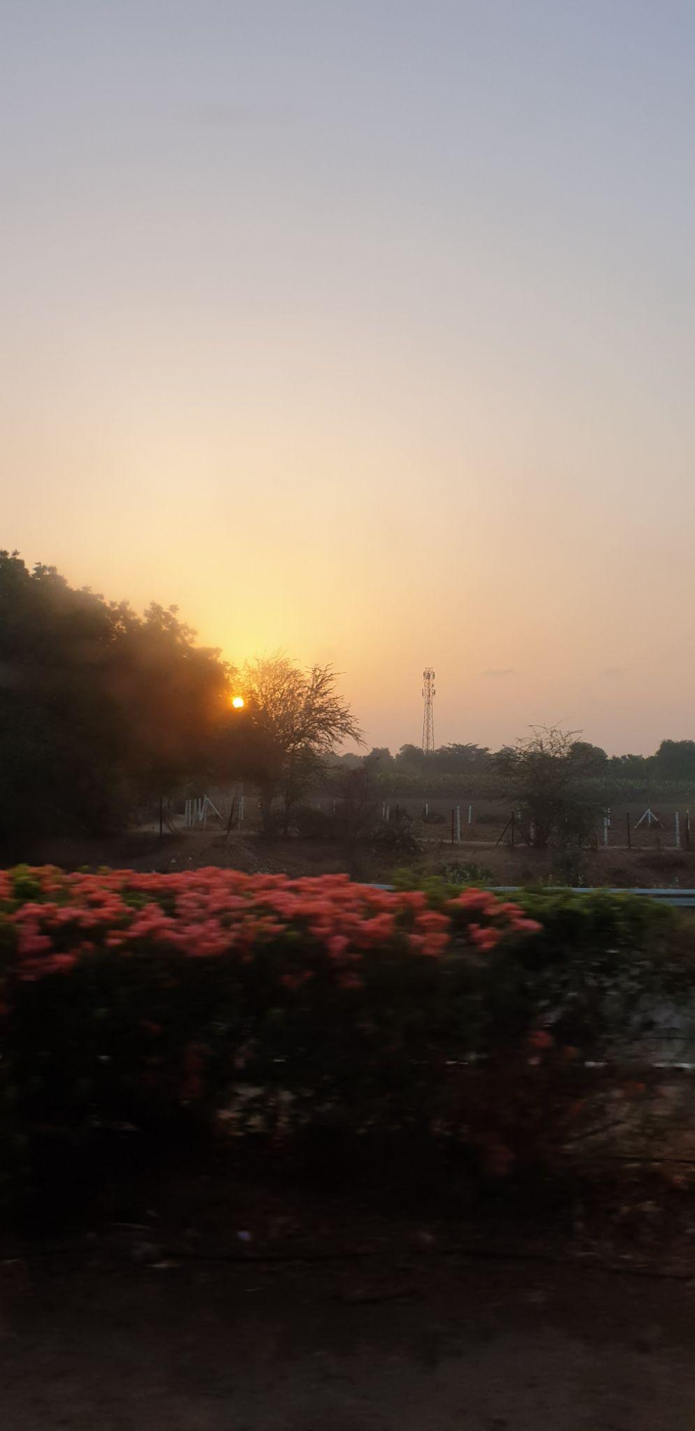 Photo of Udaipur By Pankti Shah