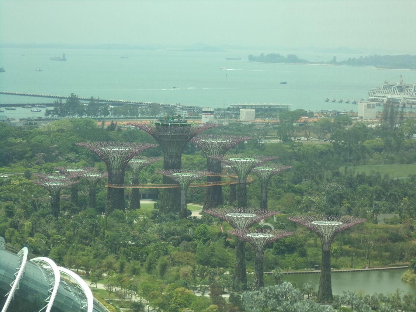 Photo of Singapore By Anusha bheemaiah