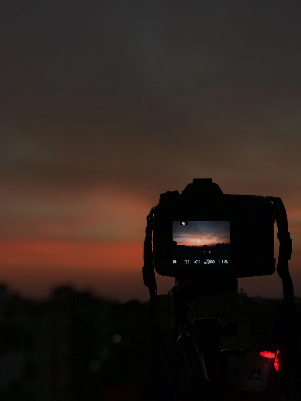 Photo of Udaipur By Kavya Kodiya