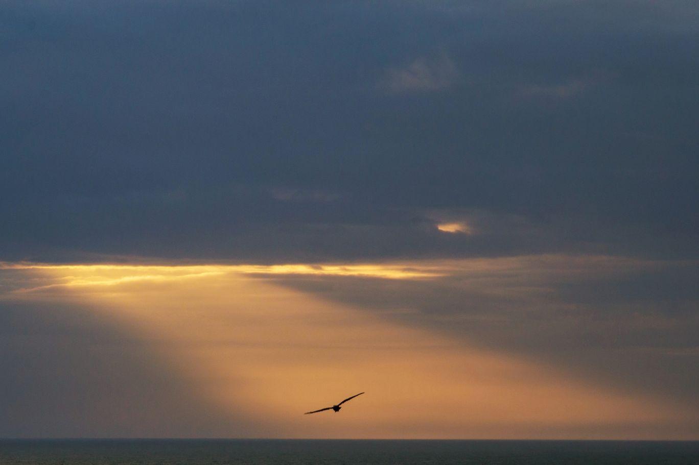 Photo of Goa By Sanjay Makhijani