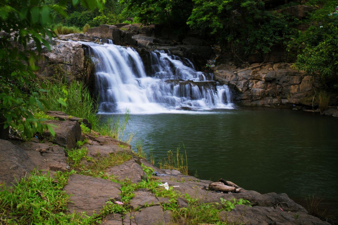 Photo of Vansda National Park By Sanjay Makhijani