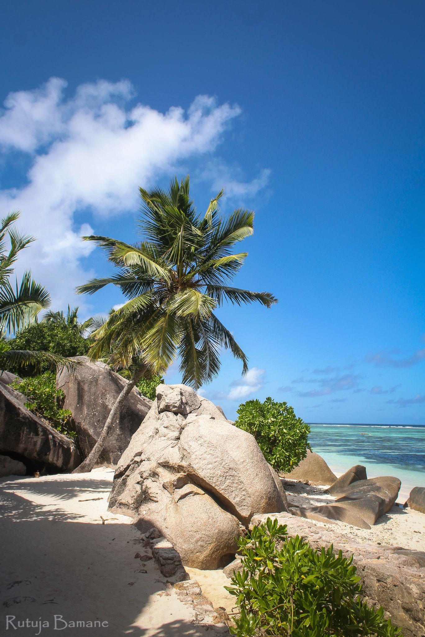 Photo of Seychelles By Rutuja Bamane