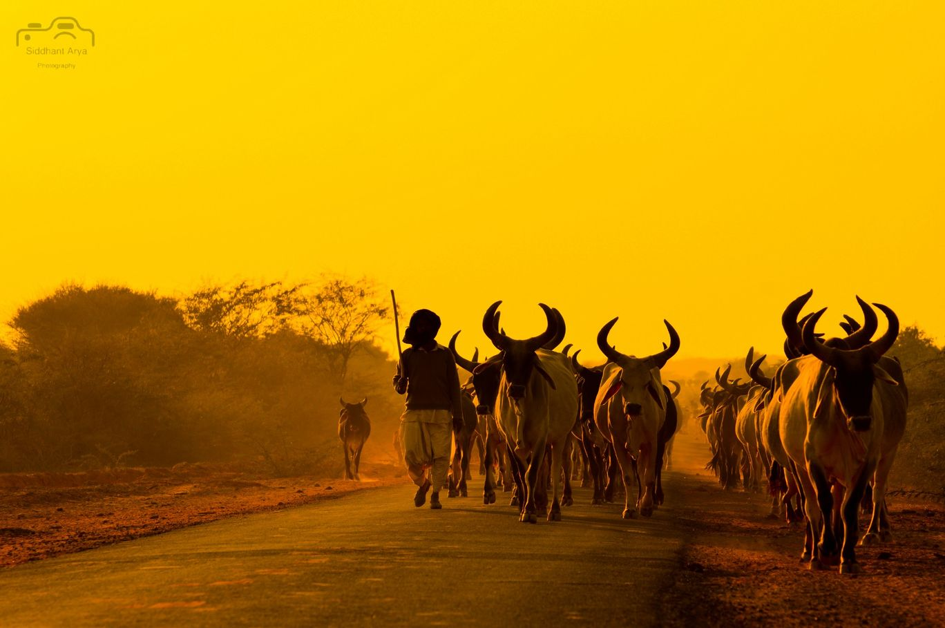 Photo of Bhuj By Siddhant Arya