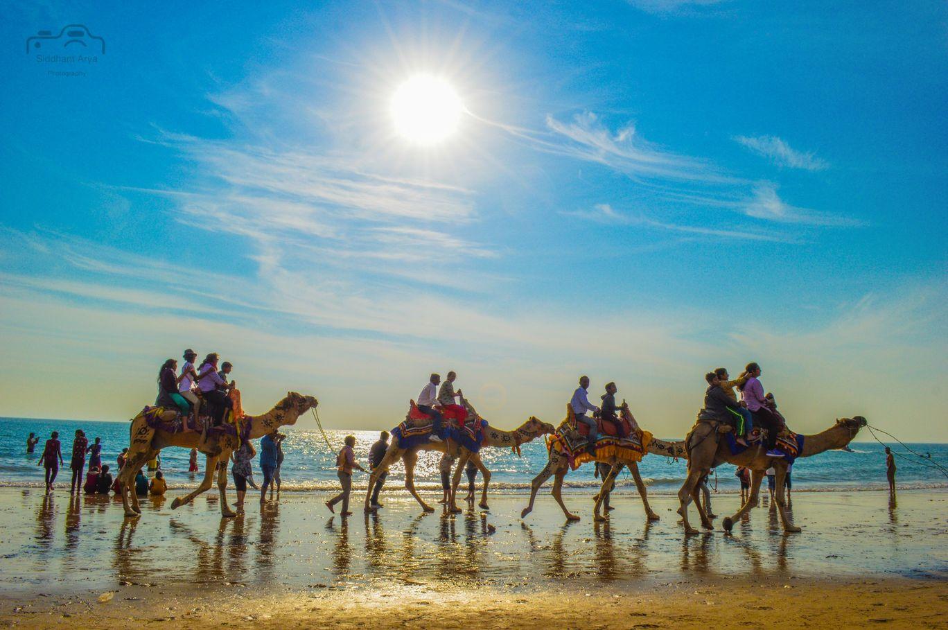 Photo of Mandvi Beach By Siddhant Arya