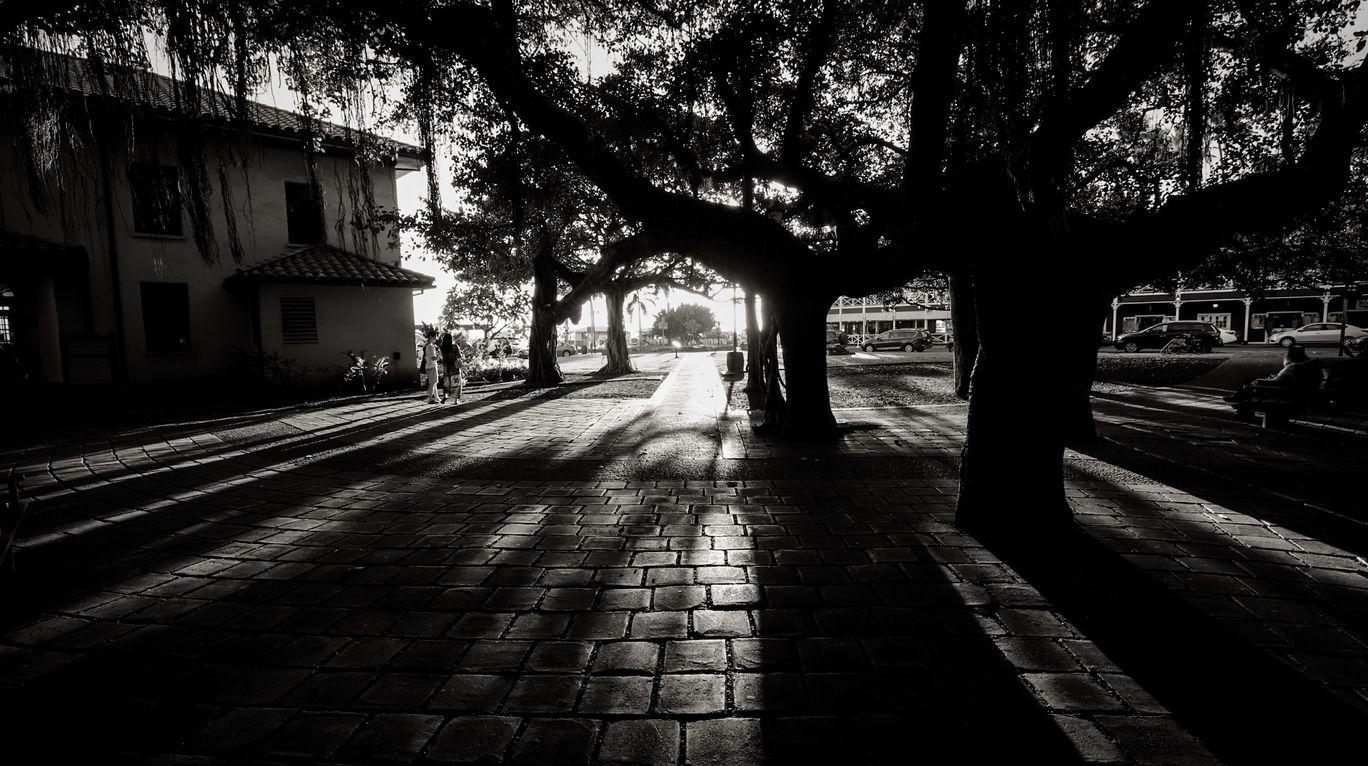 Photo of Lahaina By Suyash Mohan