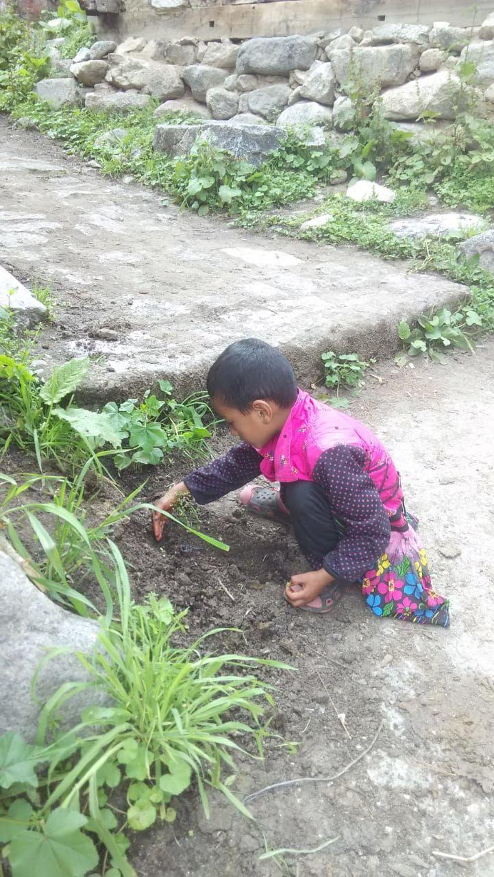 Photo of Himachal Pradesh By Gayatri Jat