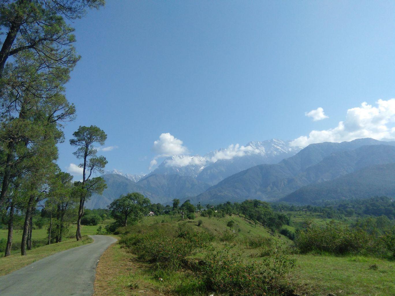 Photo of Palampur By Neha Rana