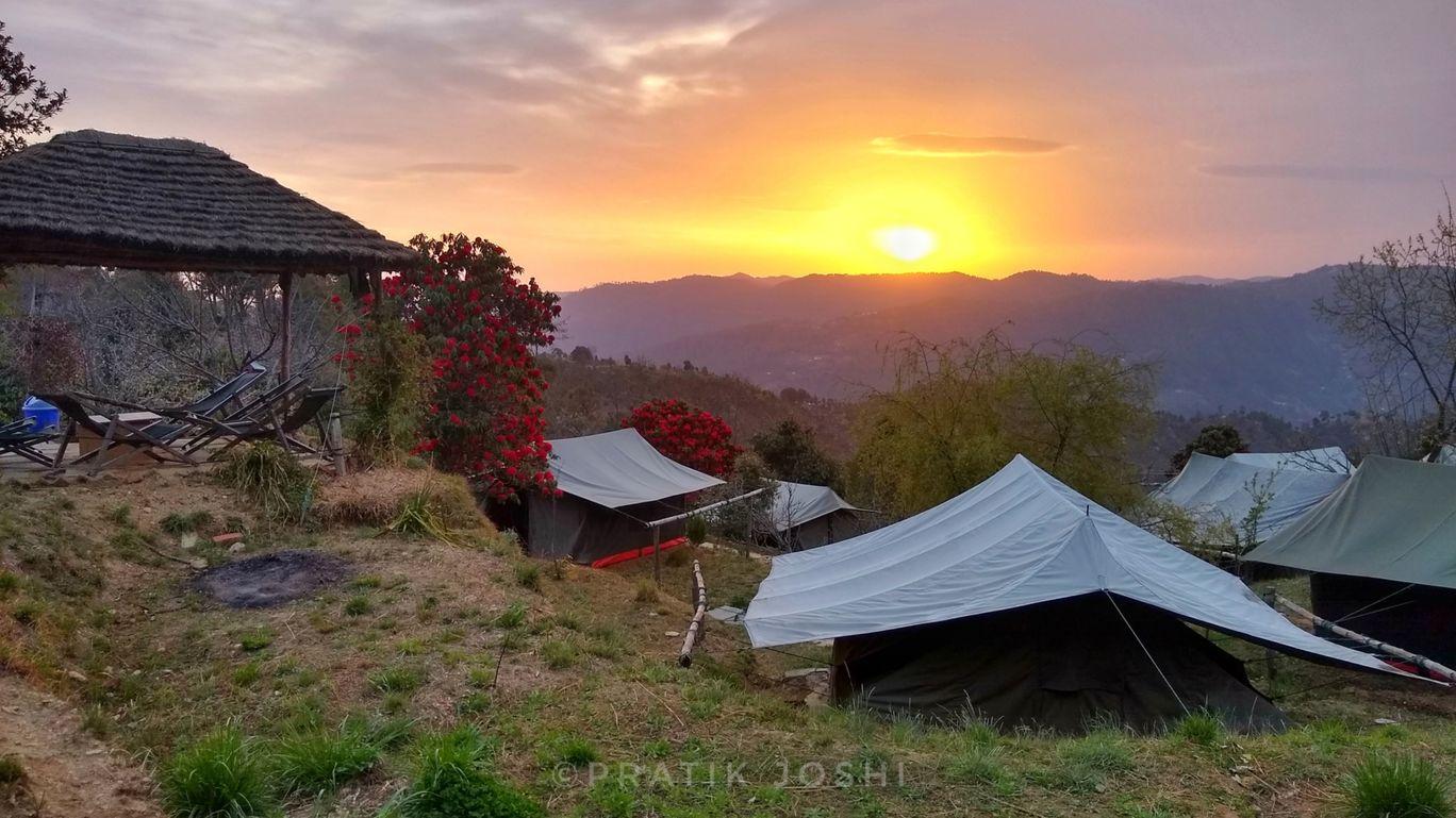 Photo of Camp Purple - Wildrift Adventures By Pratik Joshi