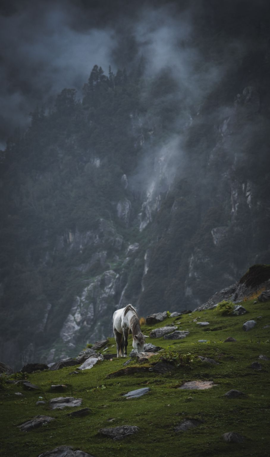 Photo of Hampta By Mayank Joshi