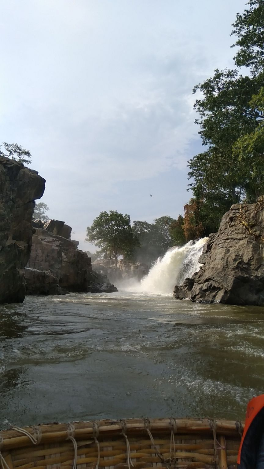 Photo of Hogenakkal Waterfalls By Vinod Tiwari