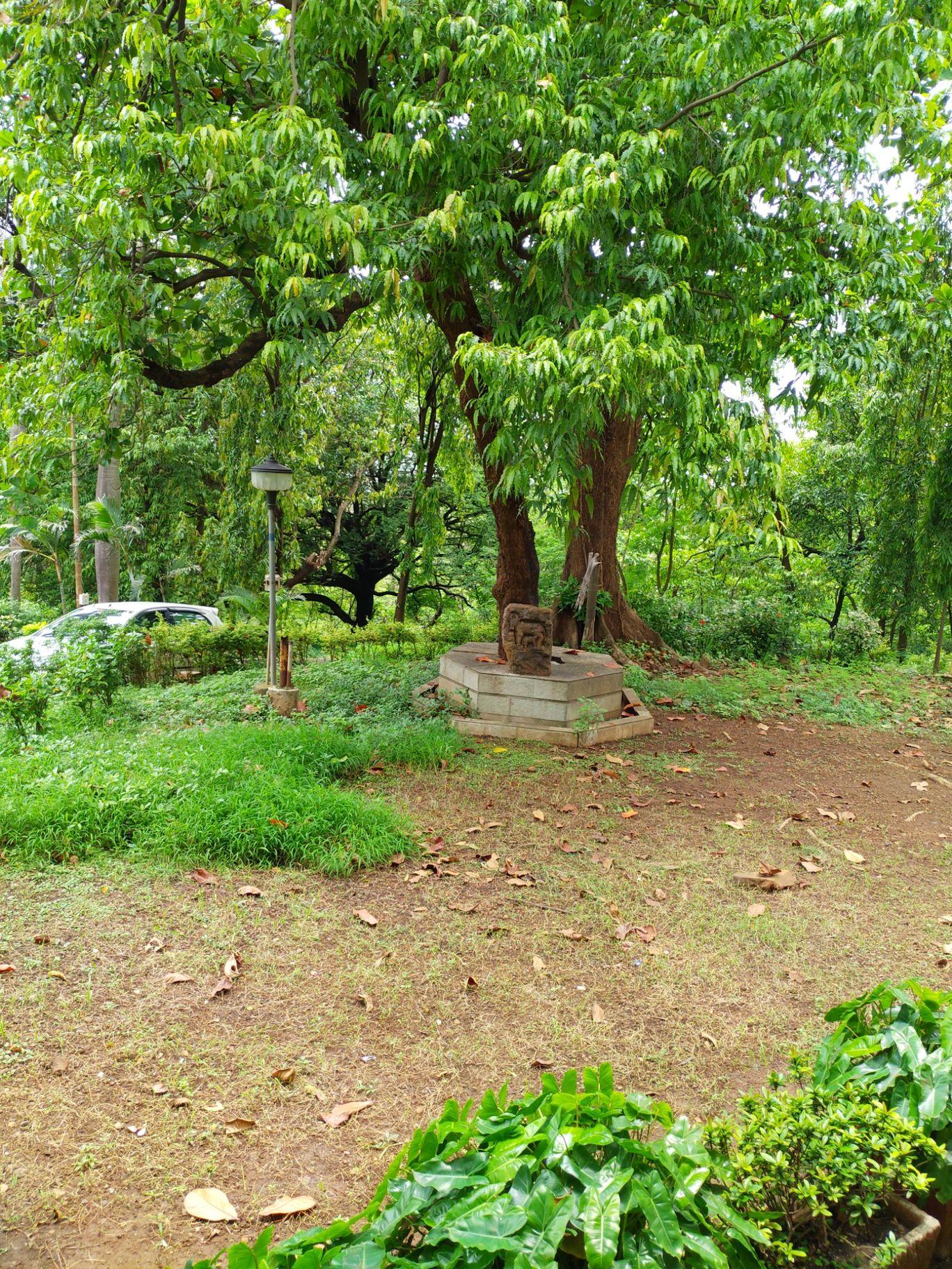 Photo of Aarey Colony By vinod Mahajan