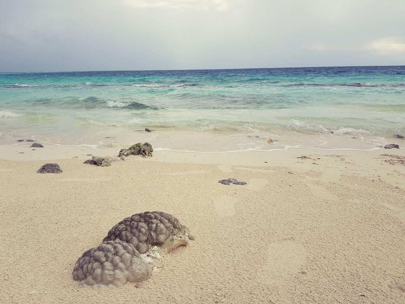 Photo of Maldives By Rajvi Shah