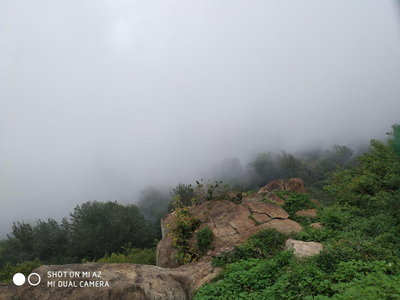 Photo of Yercaud Foot Hills By Amit Kumar