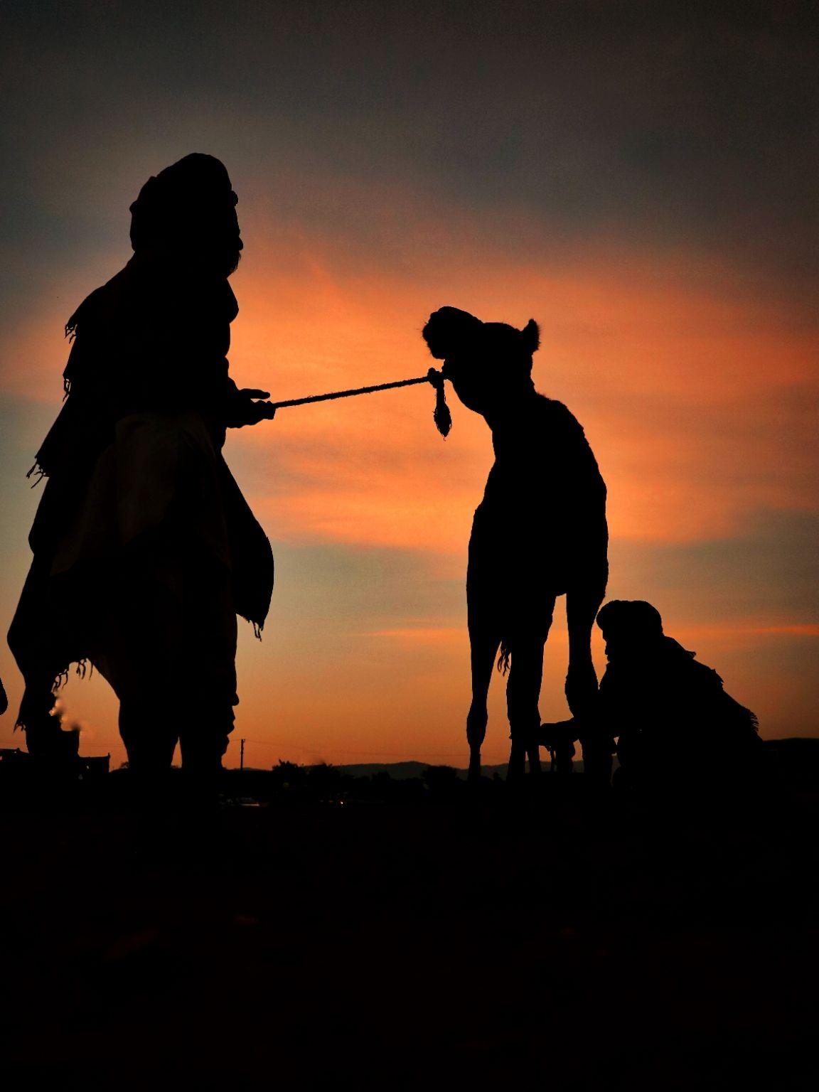Photo of Pushkar By Shubham Jain