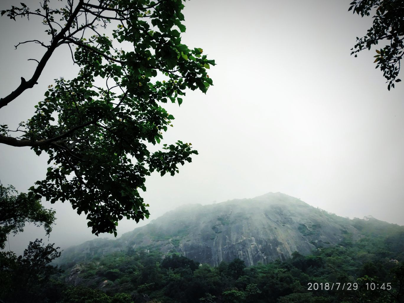 Photo of Mount Abu By tejaswini suresh