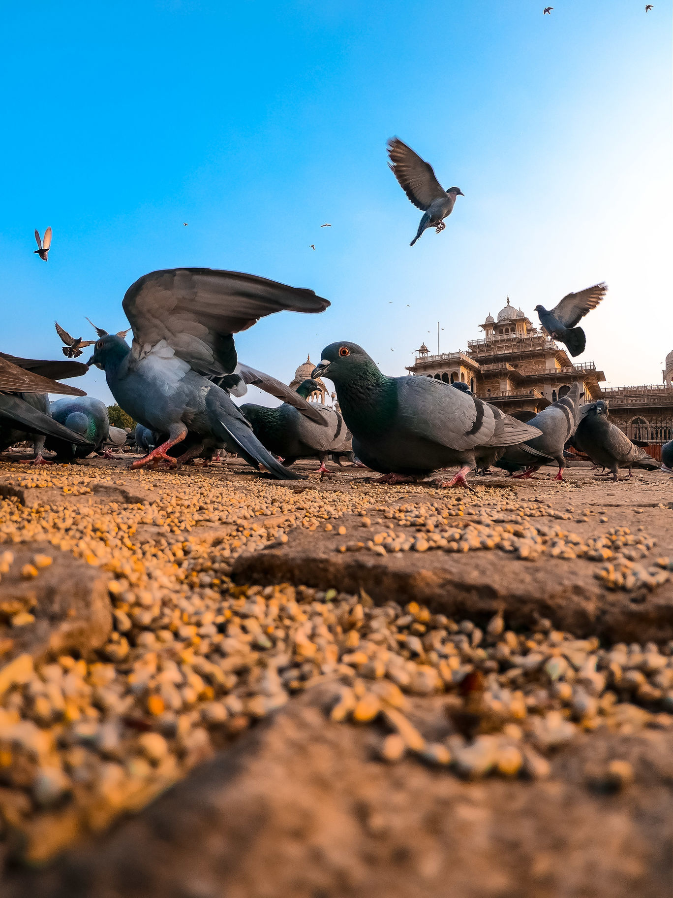 Photo of Jaipur By Akhil Narayanan