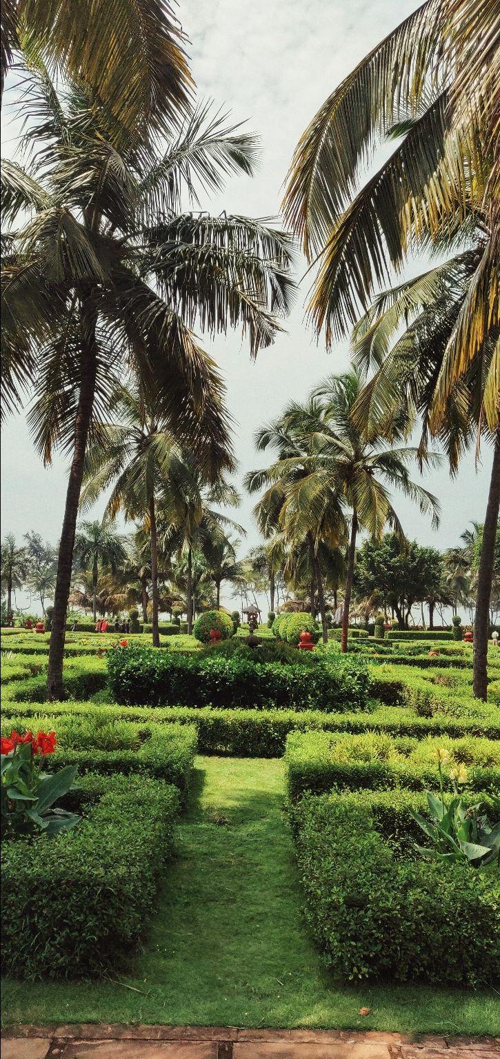 Photo of Goa By Sneha Parhi