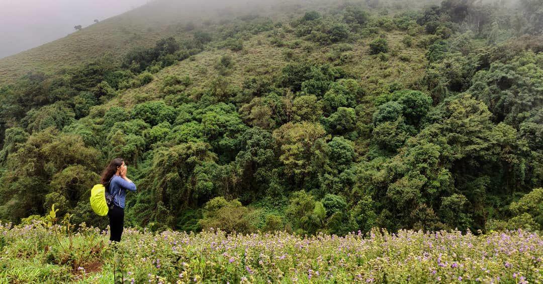 Photo of Tadiandamol Hills By Swetha Dharini