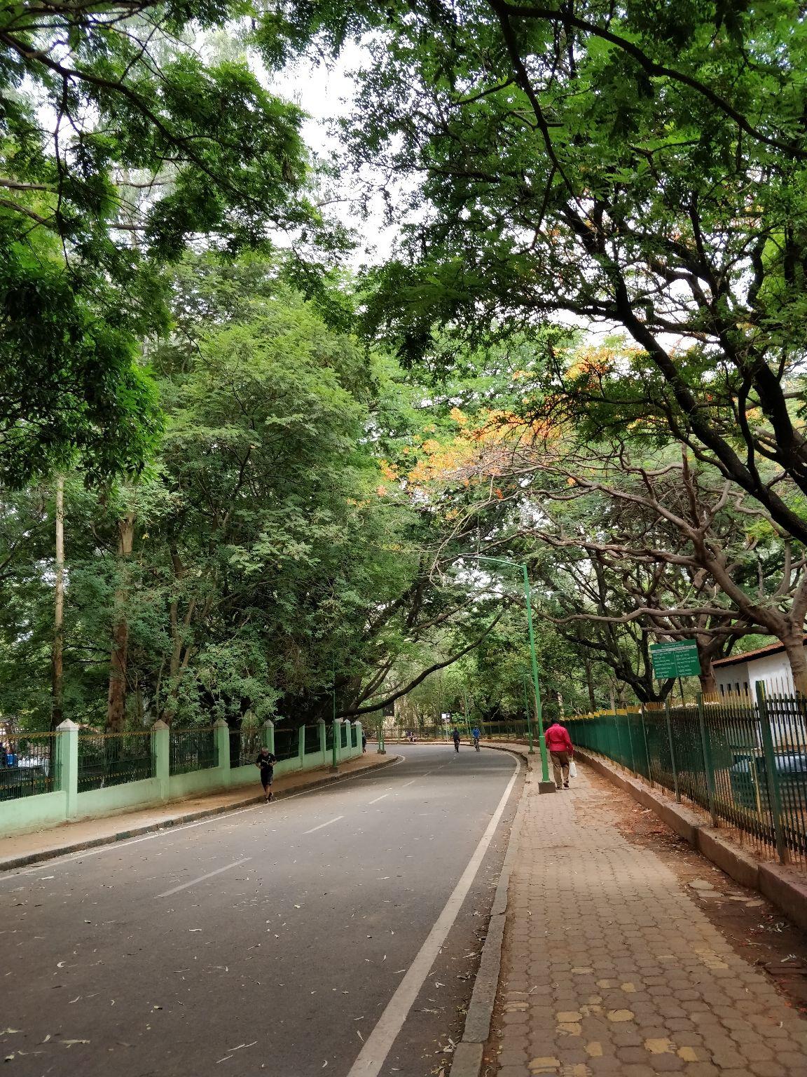 Photo of Cubbon Park By Sravankumar Ravi