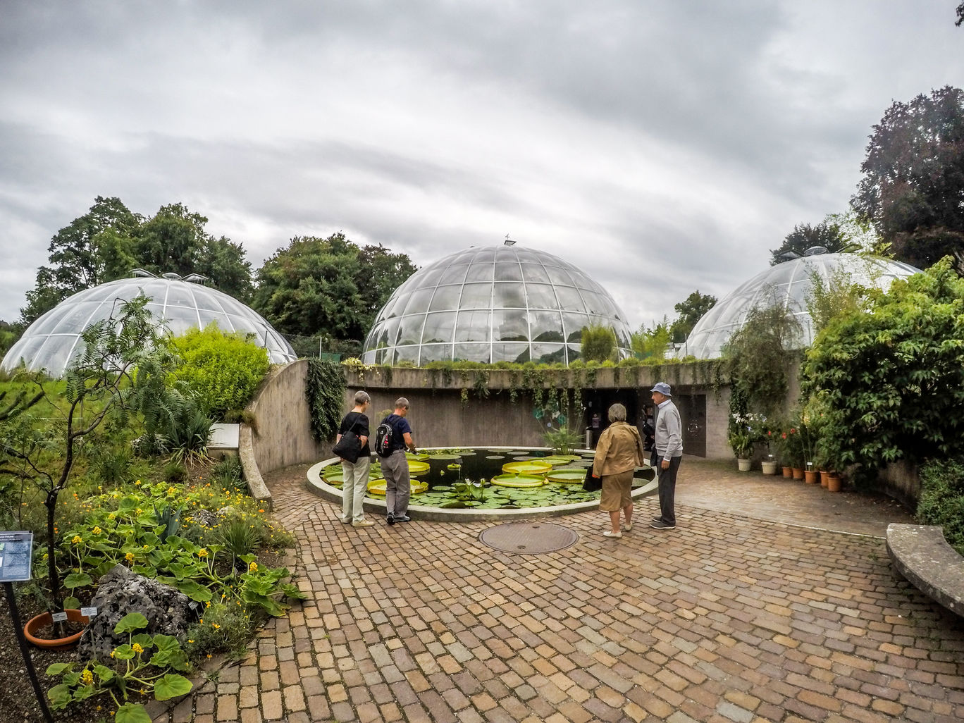 Photo of University of Zürich – Botanical Garden By Marcel Serrano