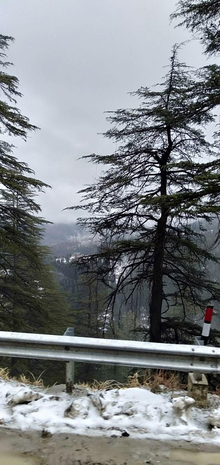 Photo of Shimla By Atharva Kshirsagar