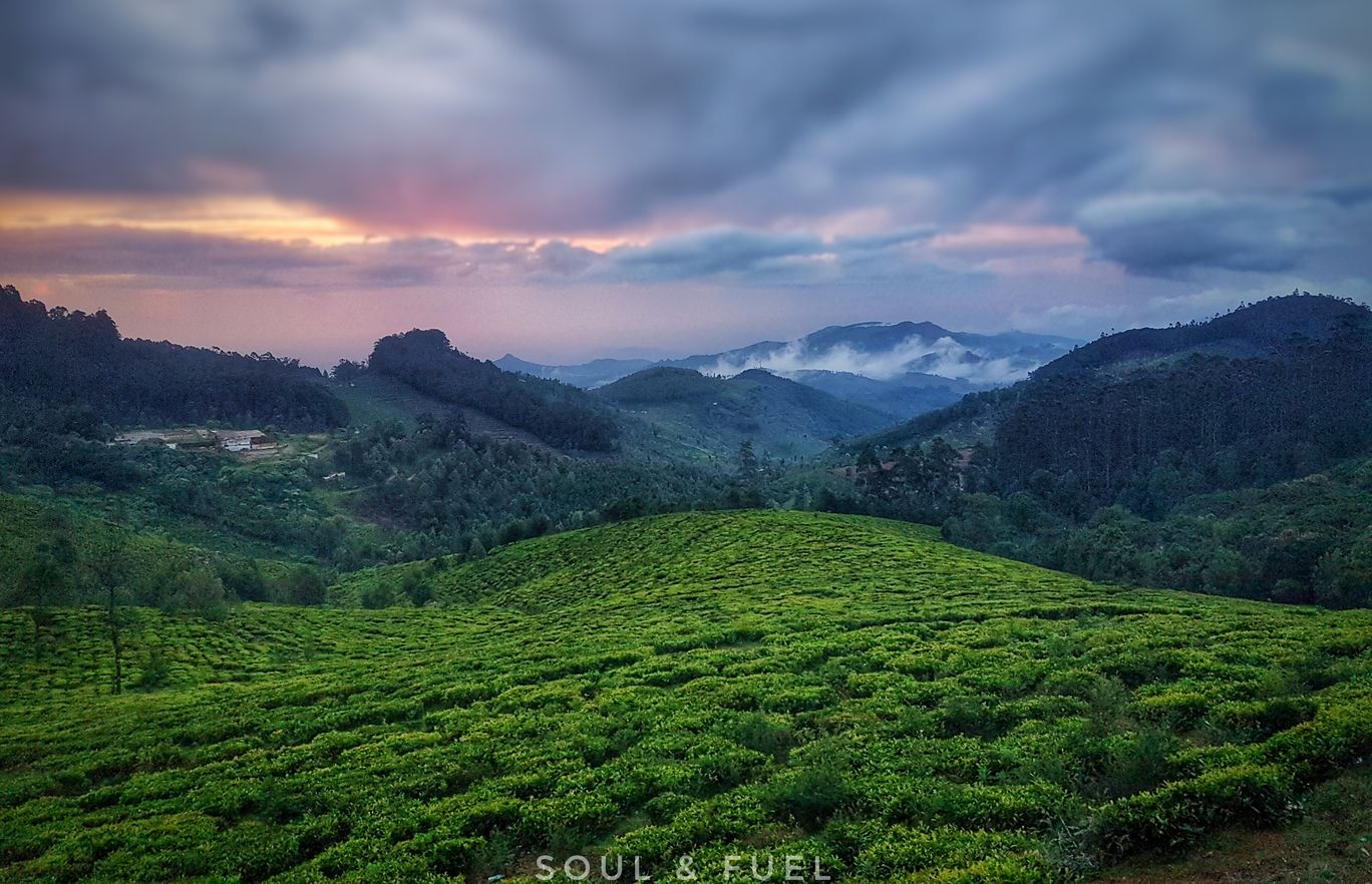 Photo of Ooty By Soul & Fuel