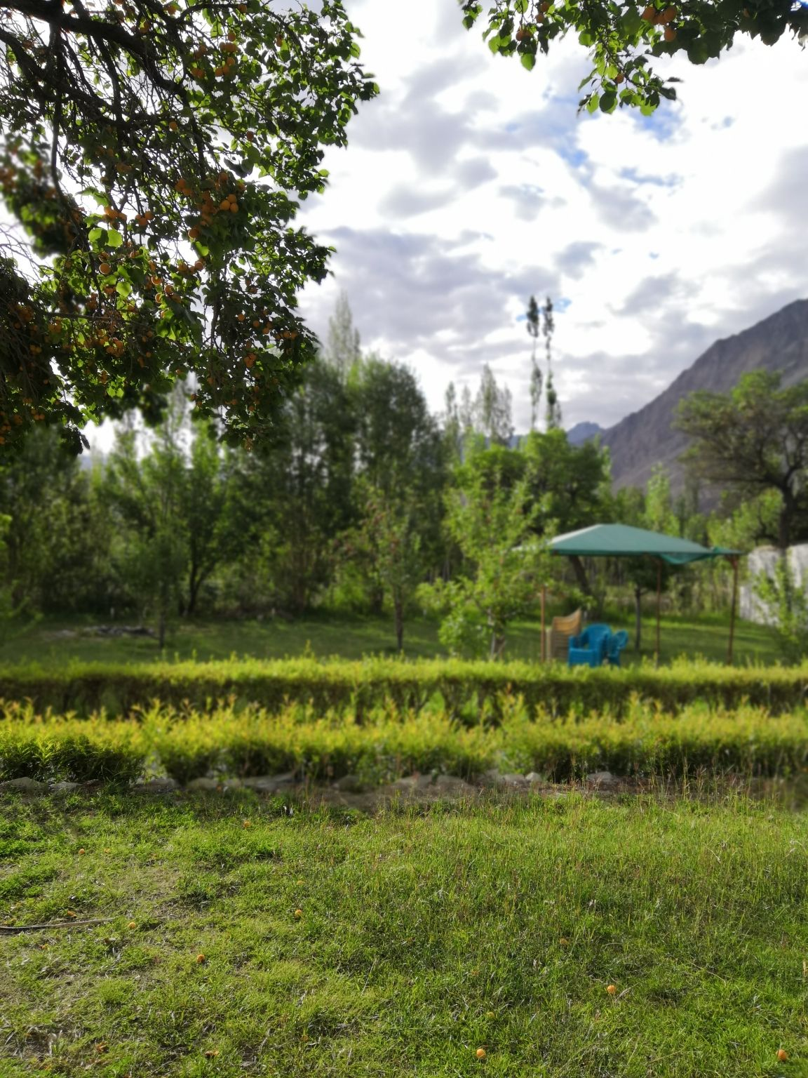 Photo of Nubra Valley By Sonal Shah