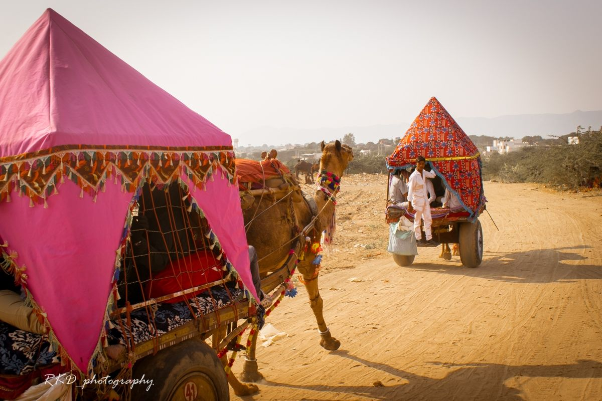 Photo of Pushkar By Rathin Kumar Das