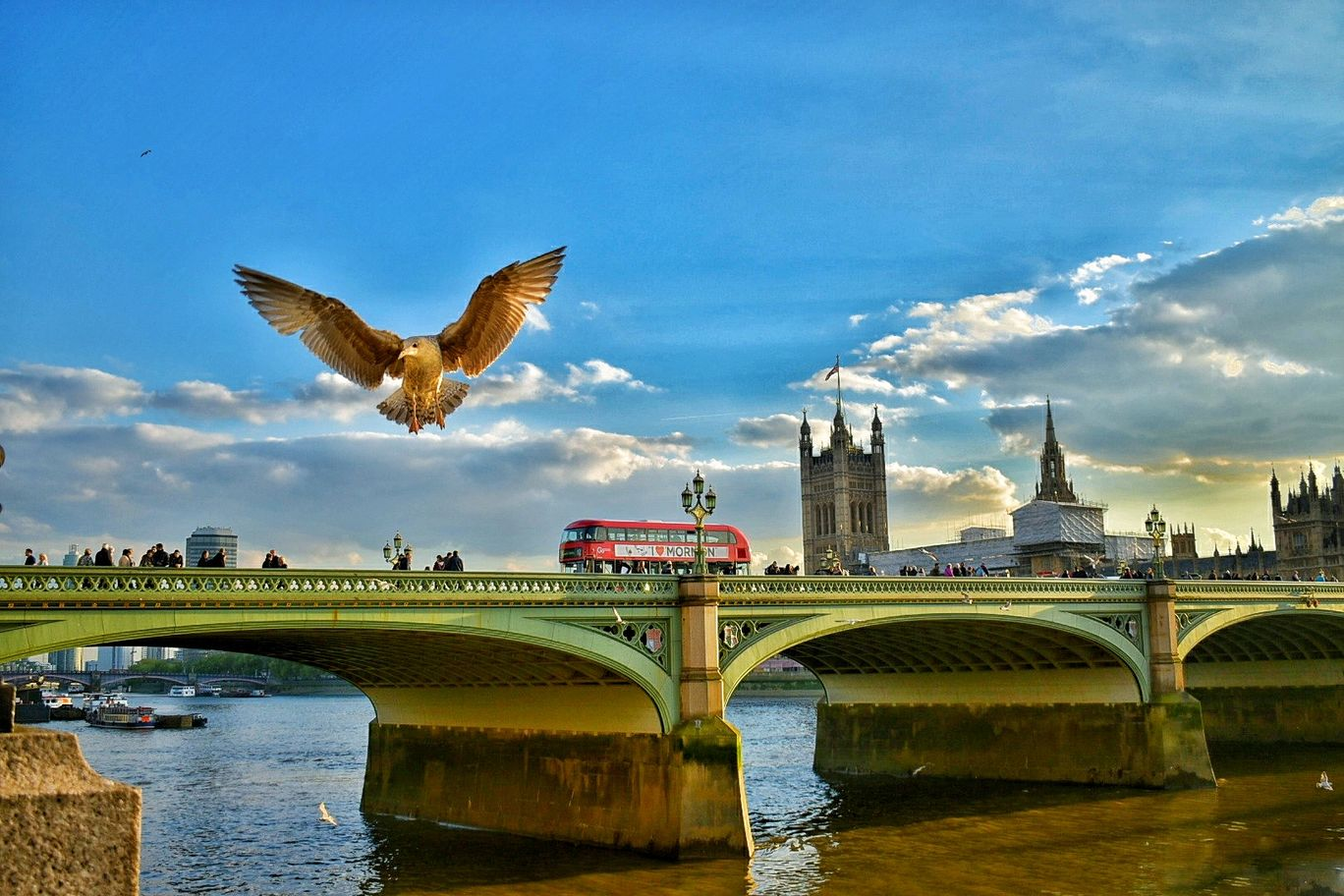 Photo of Westminster Bridge By Harsha