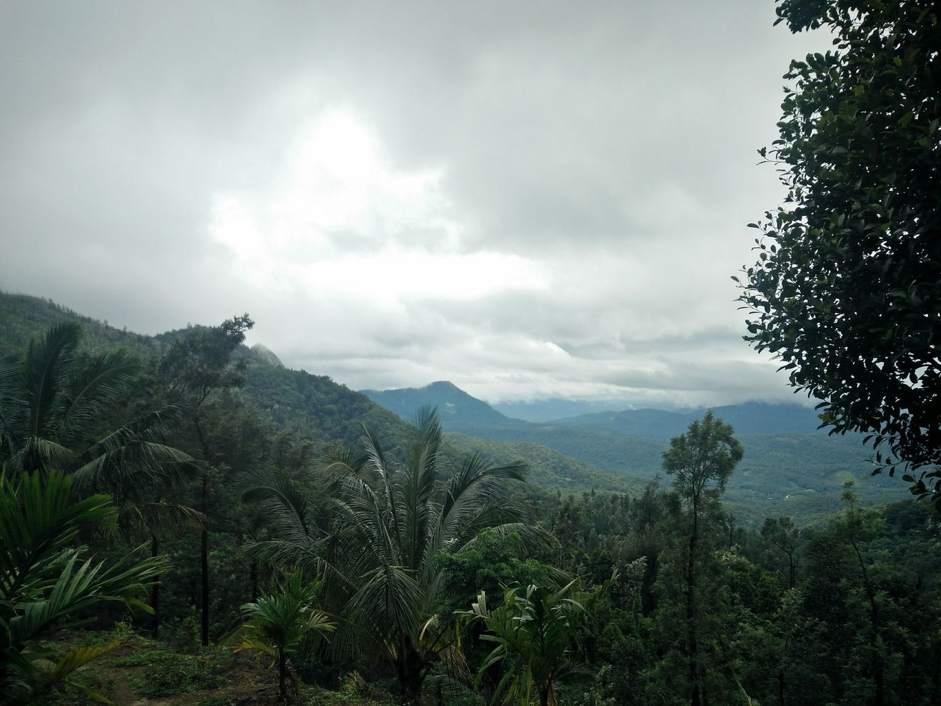 Photo of Ponmudi Hill Station By RAGHAV GUPTA