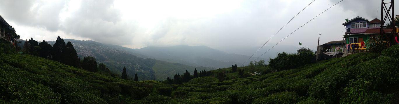 Photo of Darjeeling By Radhika Rathi