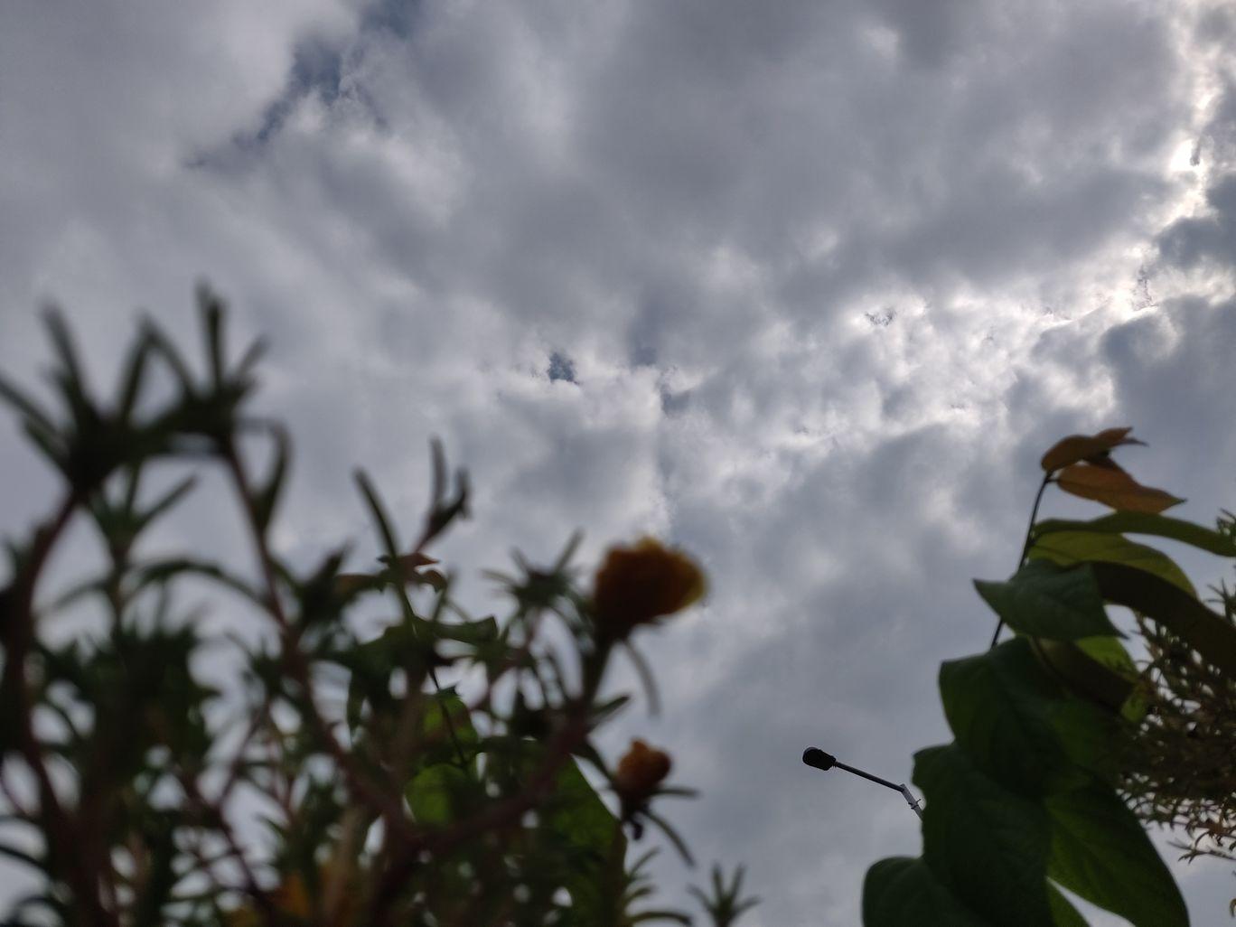 Photo of Greater Noida By Priyanka Singh