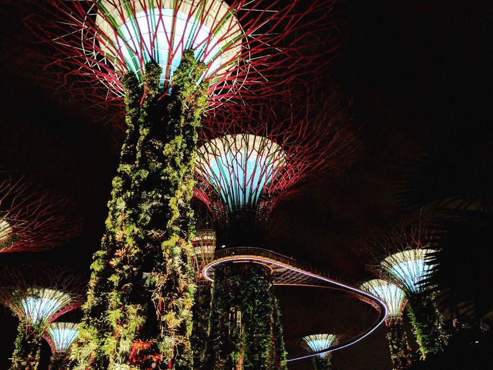 Photo of Marina Gardens Drive By nikita nangru