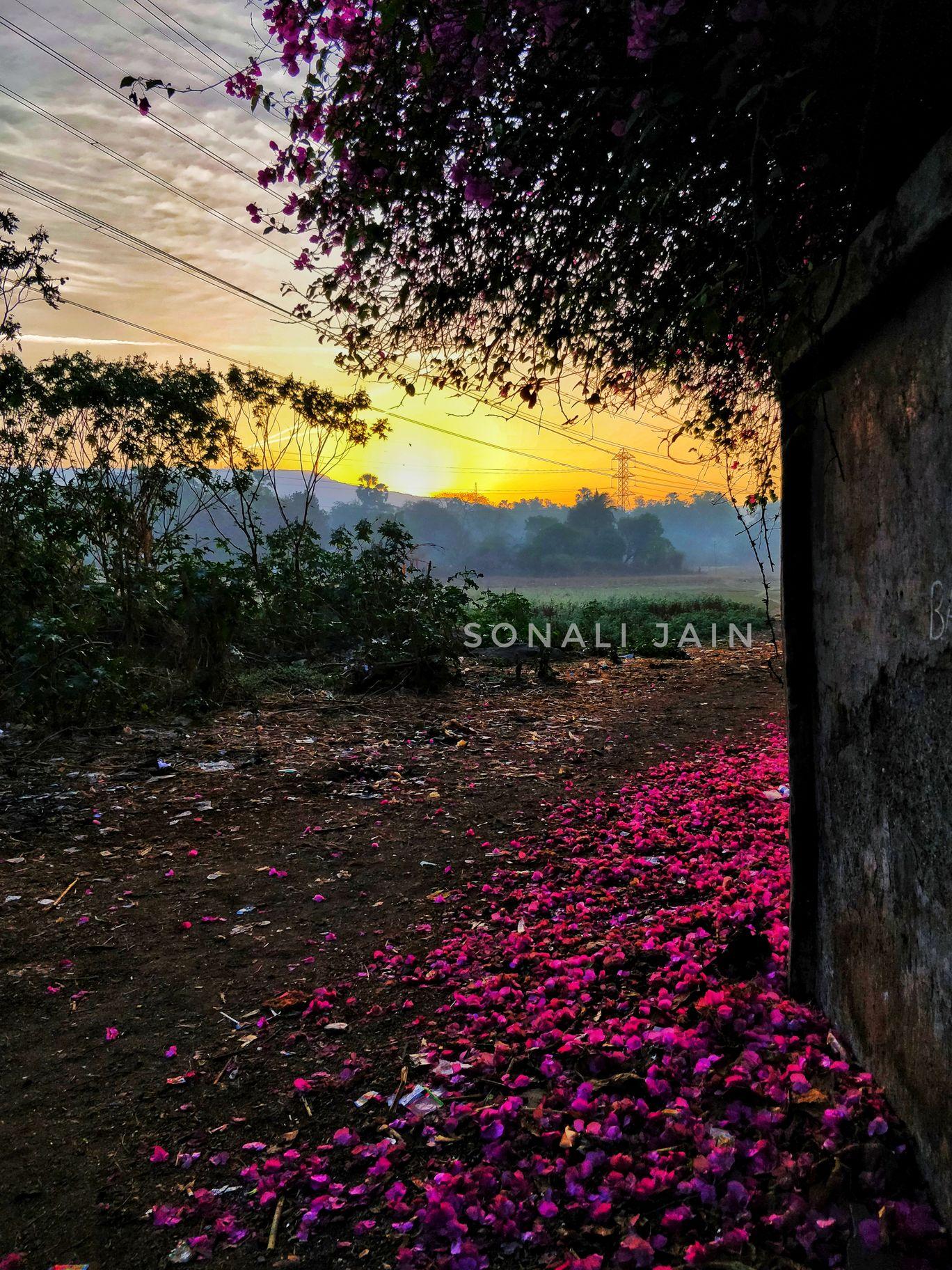Photo of Sanjay Gandhi National Park By Sonali Jain