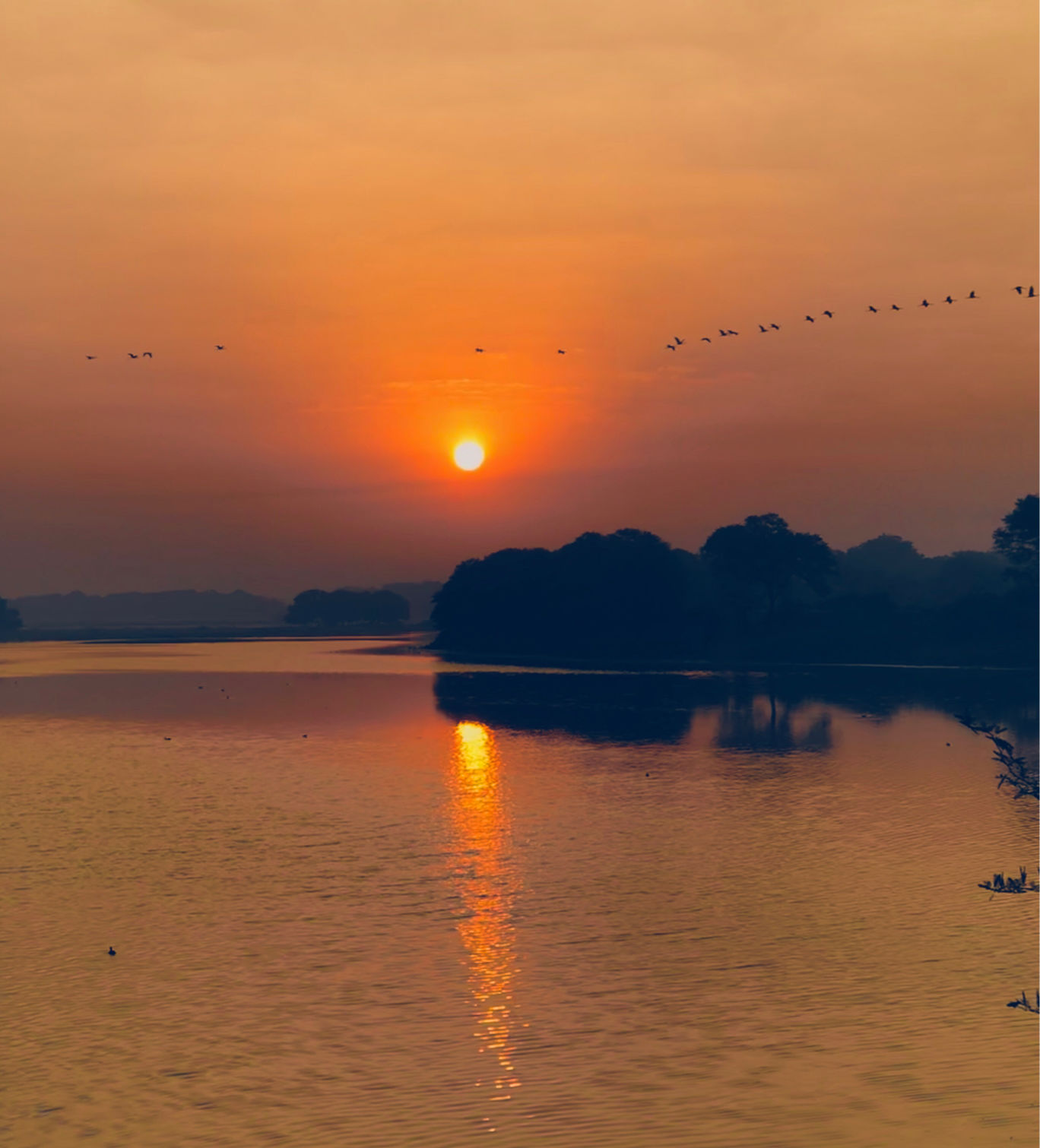 Photo of Early Morning At Thol Bird Sanctuary By Ruchi