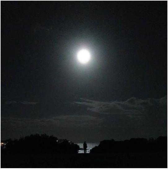 Photo of Bondi Beach NSW By Gurkriti