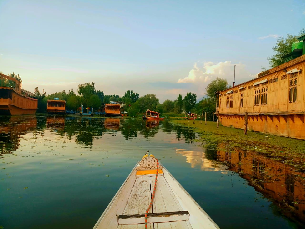Photo of Dal Lake By Sohini Chatterjee