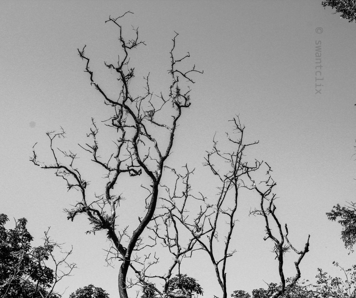 Photo of Kalleshwar By CS Anant Hegde