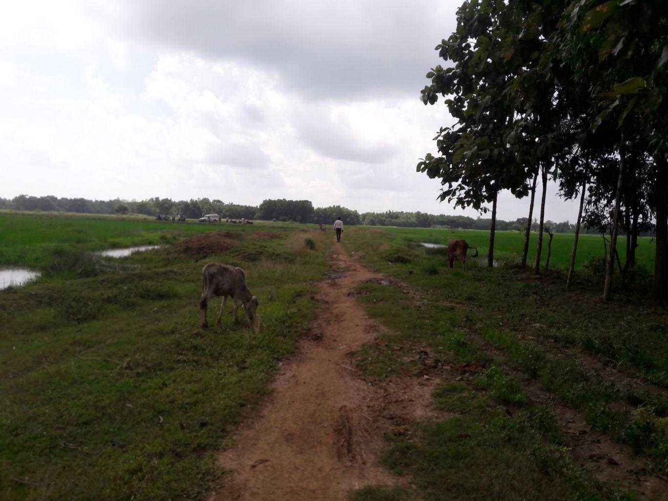 Photo of West Bengal By Shuvam Dey