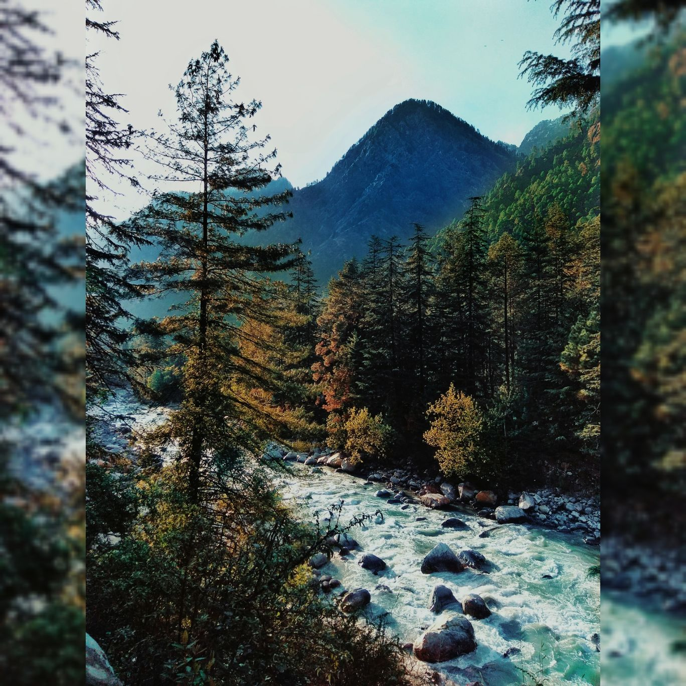 Photo of Kasol By Ashwini Ahir