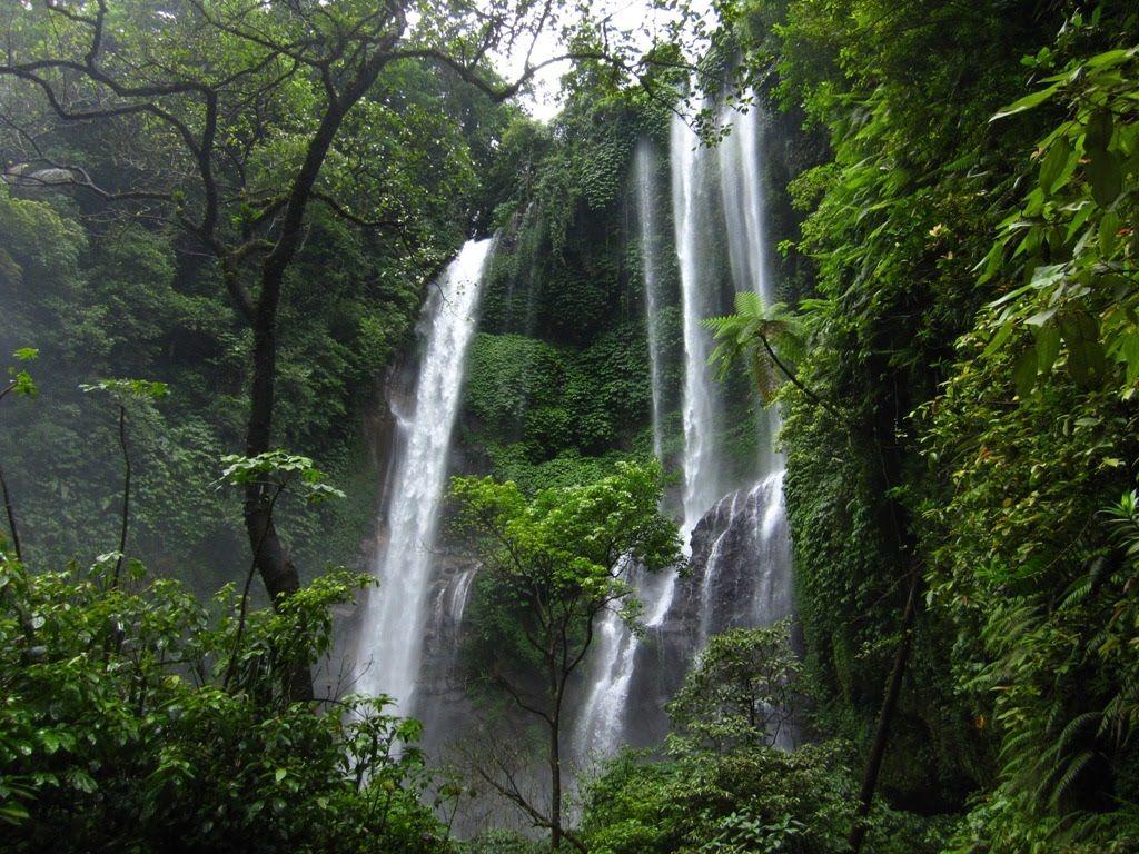 Photo of Bali By Rohan Mondal