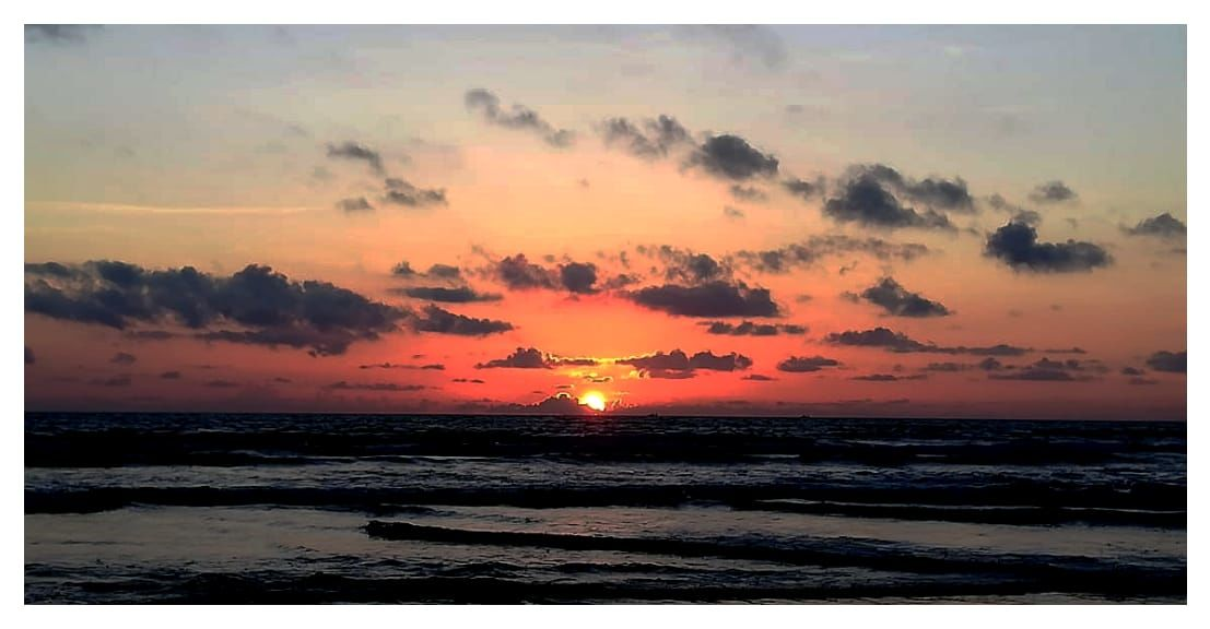 Photo of Morjim Beach By Richa Agarwal