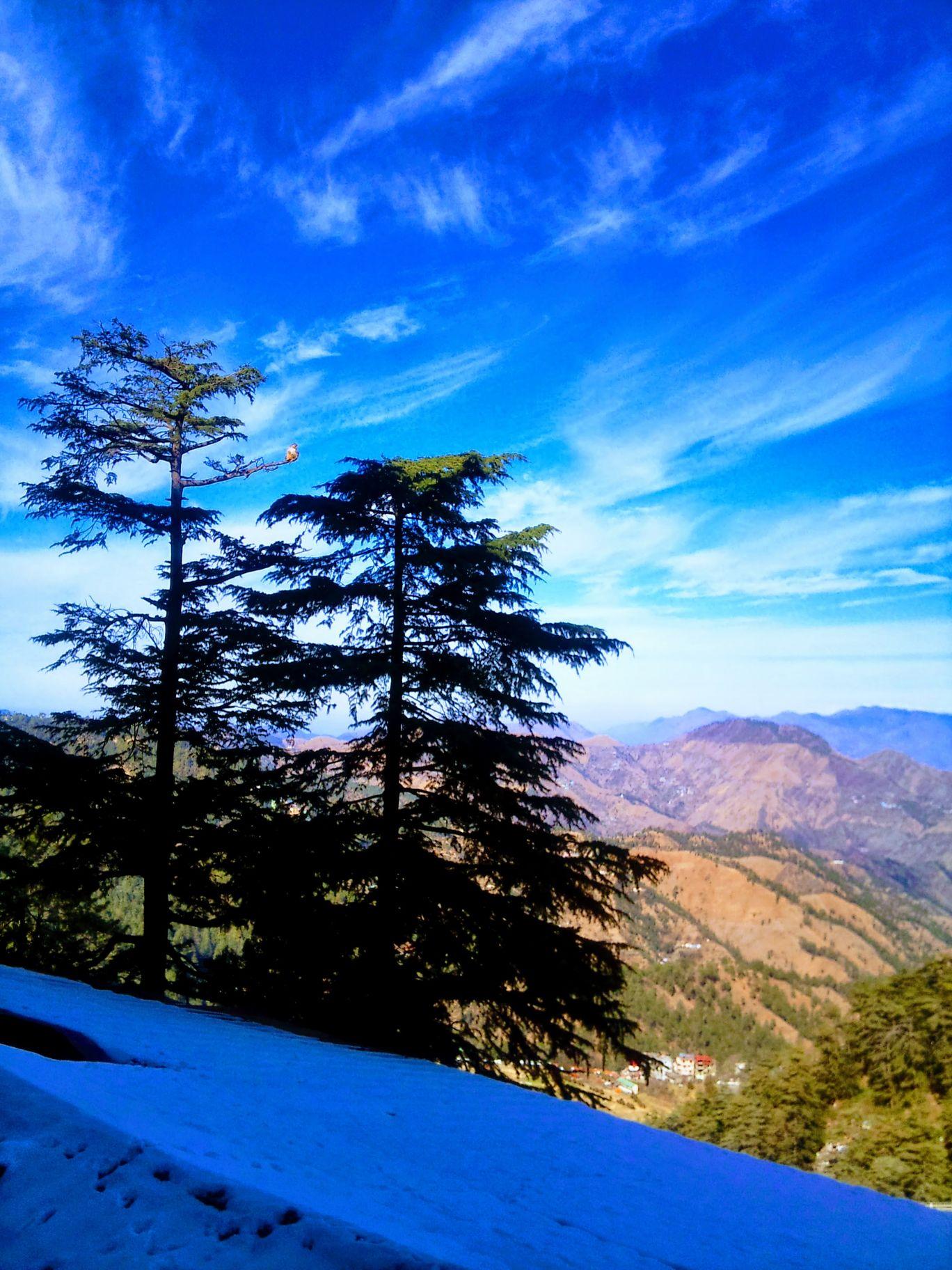 Photo of Shimla By Kiran Kumar