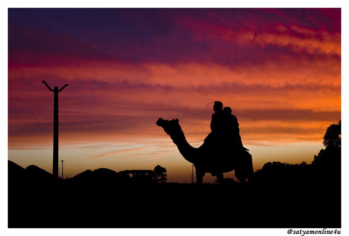 Photo of Pushkar By satyam desai
