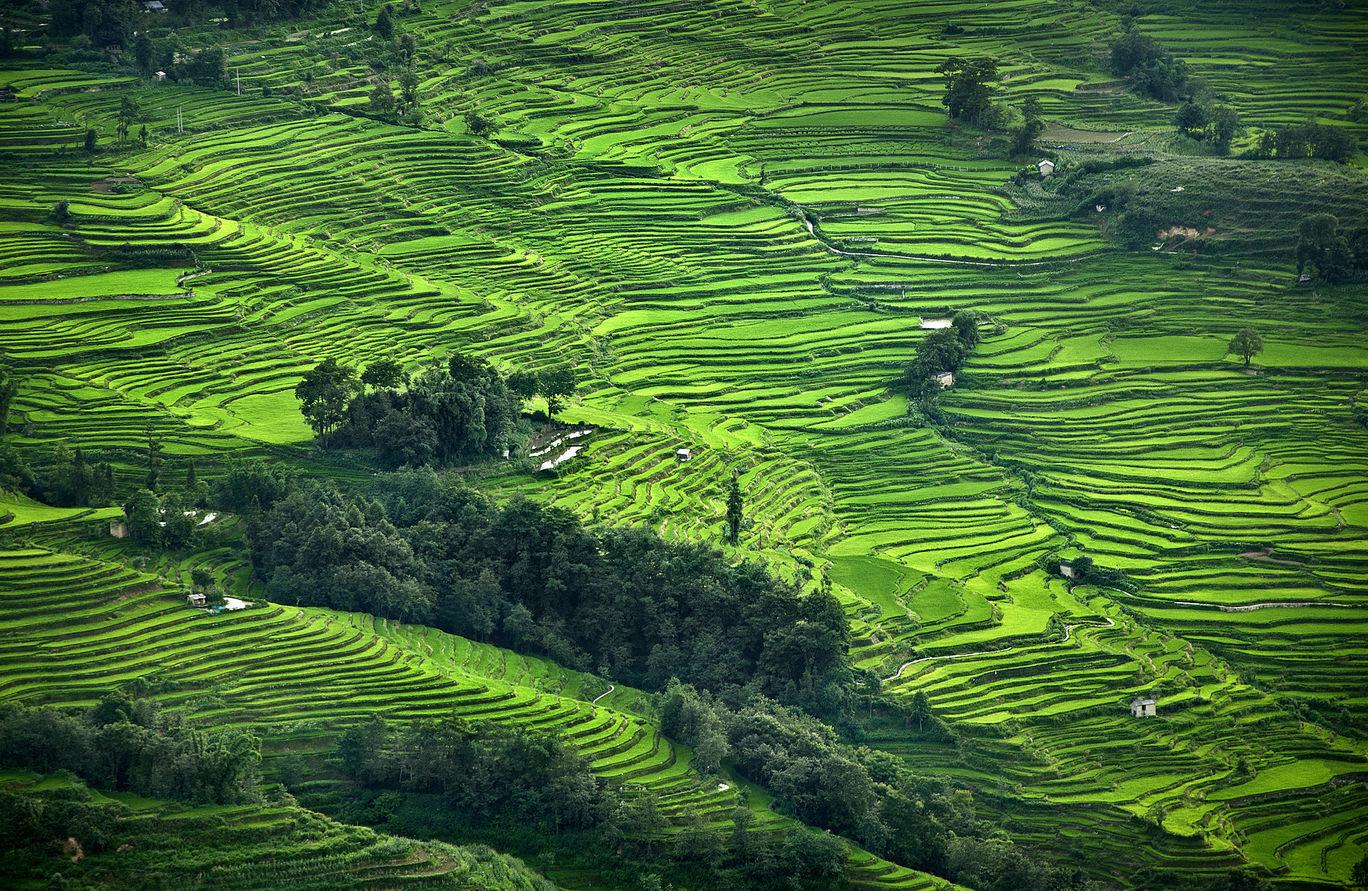 Photo of Kunming By Pranab Basak