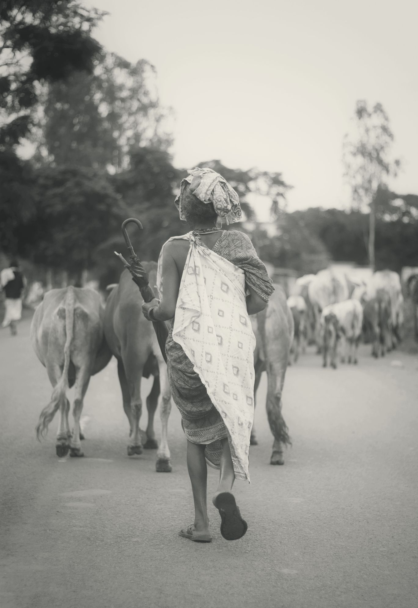 Photo of Aruku By Raaj Menneni