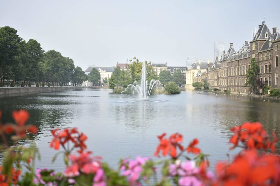 Photo of Binnenhof By Radhika Sood