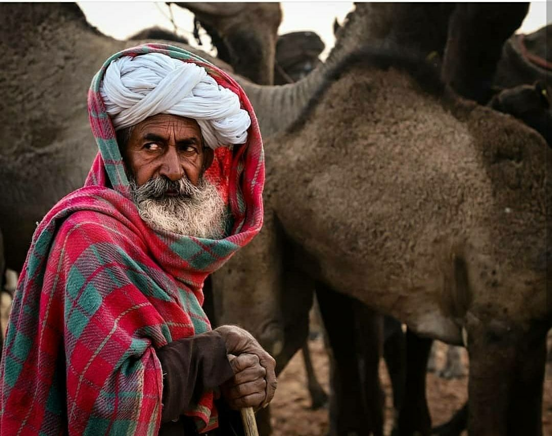 Photo of Pushkar By raghavendra nanubala